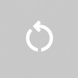 reset_icon